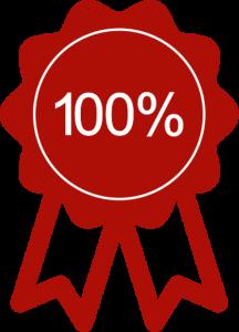 holland places icontjes 100 PERCENT